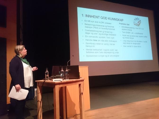 Konferanse og ildsjeler på Stryn